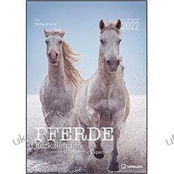 Kalendarz Stefan Heine Horses 2022 Calendar Książki i Komiksy