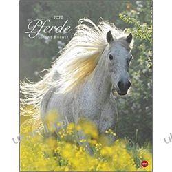 Konie Horses Sabine Stuewer Calendar 2022