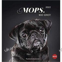Mini Kalendarz Pugs Mops 2022 Calendar