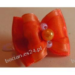 KOKARDKA PODWÓJNA pomarańczowa 1