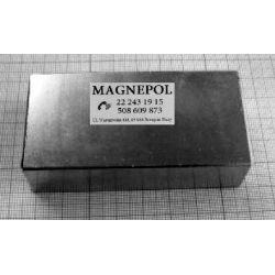 MAGNES NEODYMOWY Płytkowy 100x50x25mm N42...
