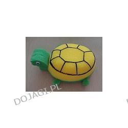 Gąbka - żółwik