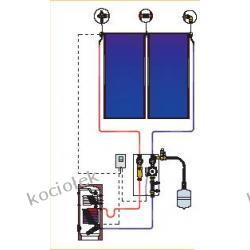 Pakiet solarny CosmoSUN Basic 2 x 2.51 + Fish 300 S2 z zestawem mont.